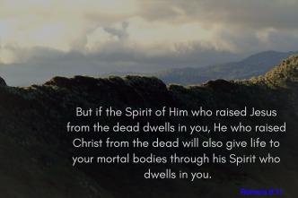 Romans 8-11